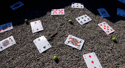 Scattered playing cards in a screencap from the music video for 'A Glow From Your Window'